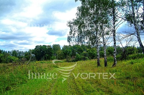 Nature / landscape royalty free stock image #100063776