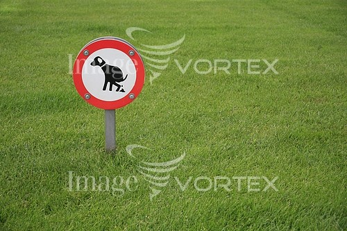 Park / outdoor royalty free stock image #139497563