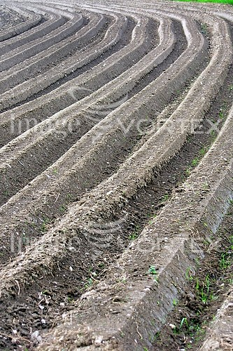 Industry / agriculture royalty free stock image #156656790