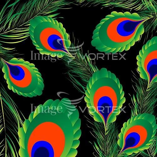Bird royalty free stock image #172160438