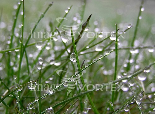 Nature / landscape royalty free stock image #180931963