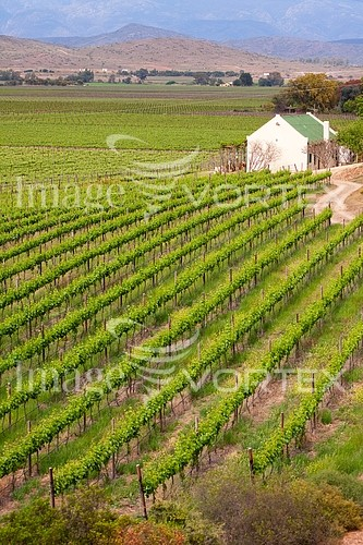 Industry / agriculture royalty free stock image #187561199