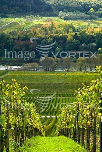 Industry / agriculture royalty free stock image #209219271