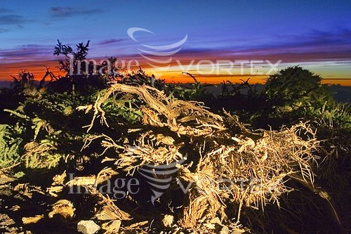 Nature / landscape royalty free stock image #210662753
