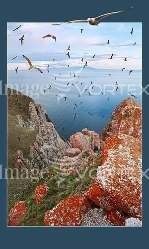 Nature / landscape royalty free stock image #220789900