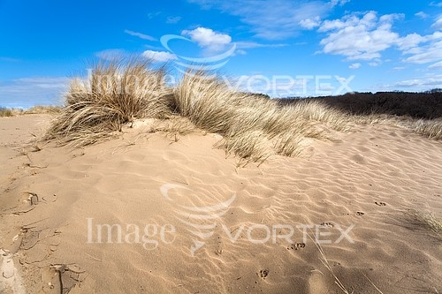 Nature / landscape royalty free stock image #226574929