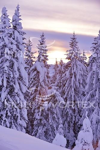 Nature / landscape royalty free stock image #285306791