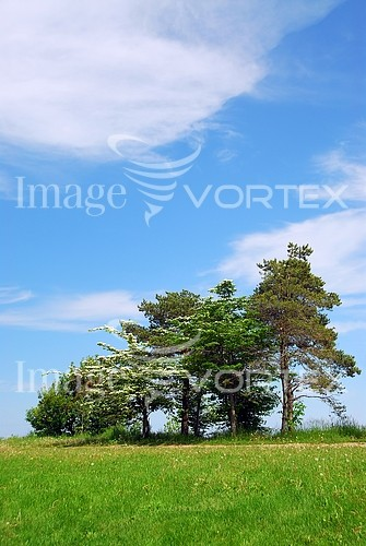 Nature / landscape royalty free stock image #294814764