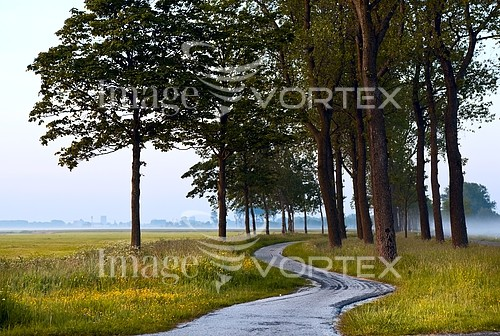 Park / outdoor royalty free stock image #348433251