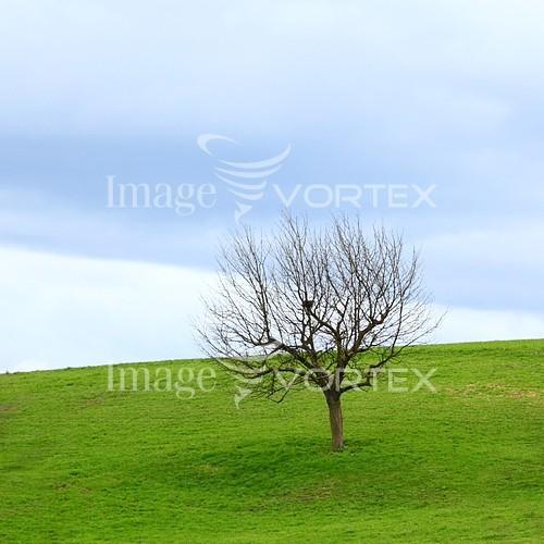 Nature / landscape royalty free stock image #365218544