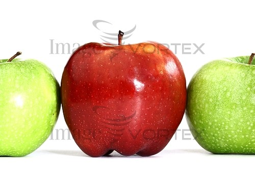 Food / drink royalty free stock image #391946094