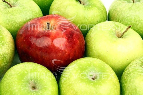 Food / drink royalty free stock image #391967219