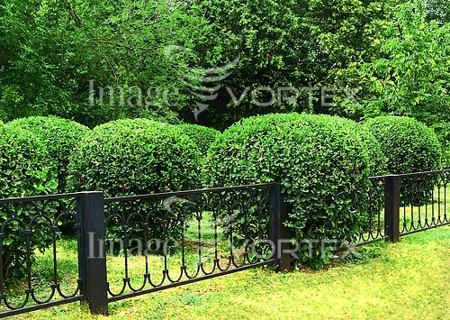 Park / outdoor royalty free stock image #391627392