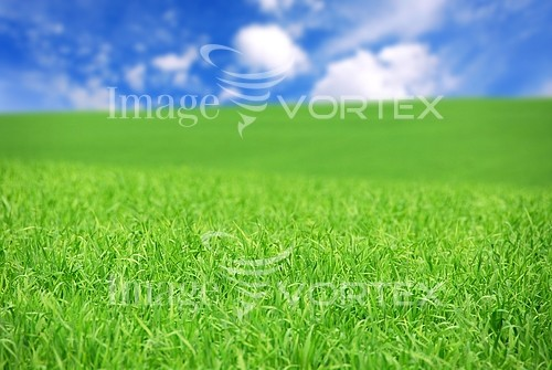 Industry / agriculture royalty free stock image #394531884