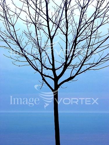 Nature / landscape royalty free stock image #396704866