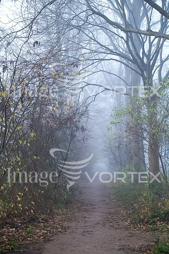 Park / outdoor royalty free stock image #435915960