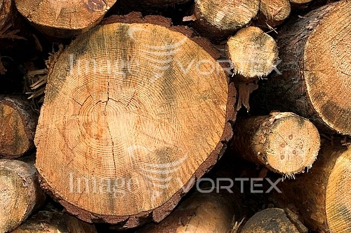 Industry / agriculture royalty free stock image #440841853