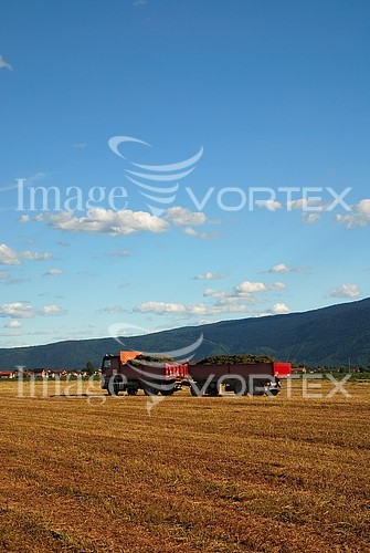 Industry / agriculture royalty free stock image #445305206