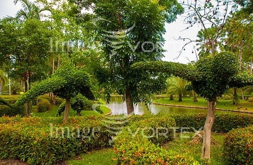 Park / outdoor royalty free stock image #464257826