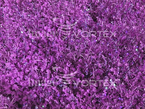 Background / texture royalty free stock image #523243374