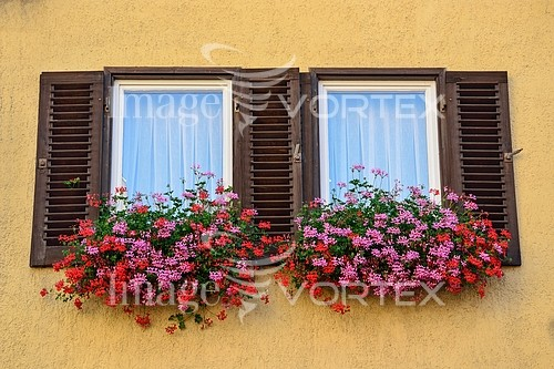 Architecture / building royalty free stock image #573000353