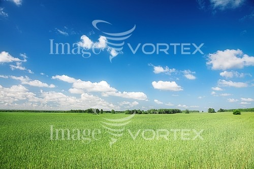 Industry / agriculture royalty free stock image #586788174
