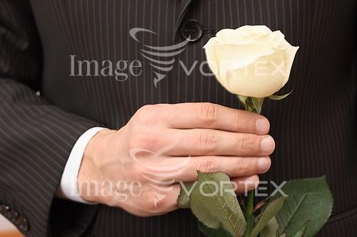 Celebration royalty free stock image #632498534