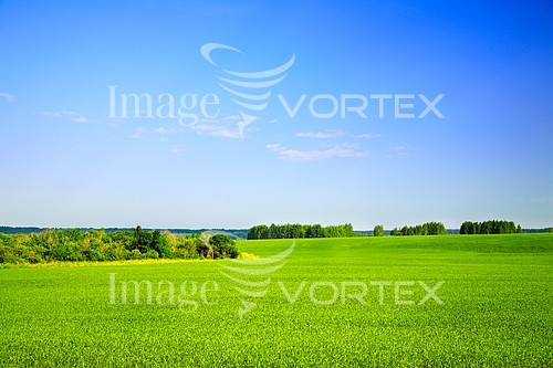 Industry / agriculture royalty free stock image #635560727