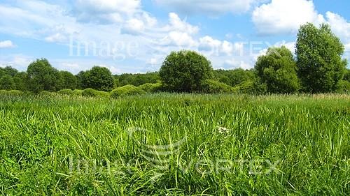Nature / landscape royalty free stock image #638417920
