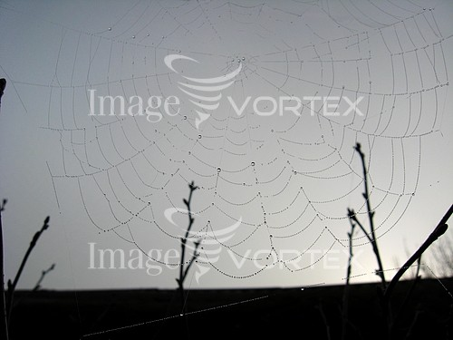 Nature / landscape royalty free stock image #758406238