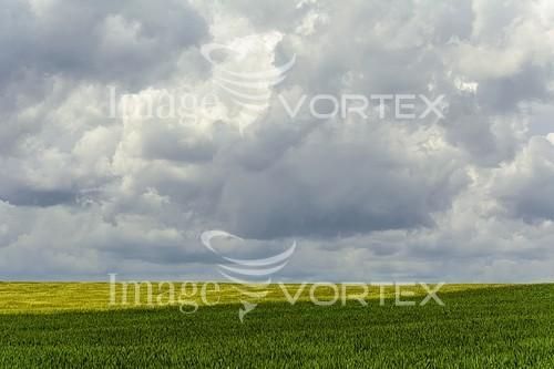 Nature / landscape royalty free stock image #767445256