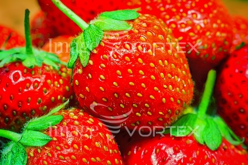 Food / drink royalty free stock image #770577364