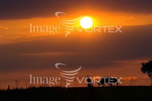 Nature / landscape royalty free stock image #790091839