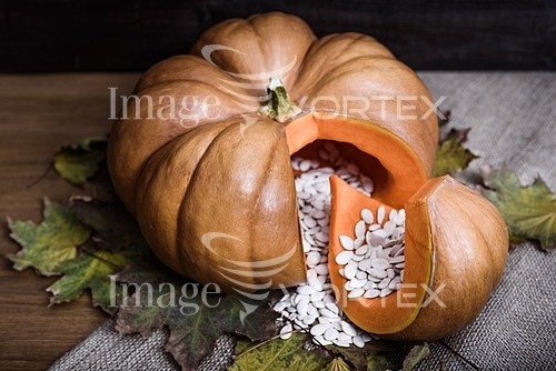 Industry / agriculture royalty free stock image #795648632