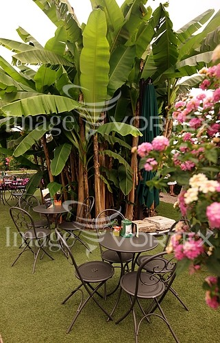 Park / outdoor royalty free stock image #799173276