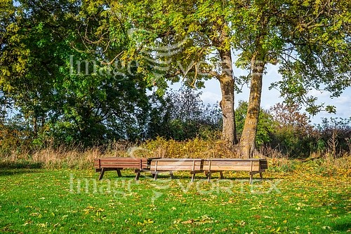 Park / outdoor royalty free stock image #803420421