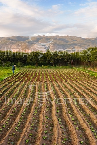 Industry / agriculture royalty free stock image #824207134