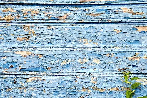 Background / texture royalty free stock image #846692218