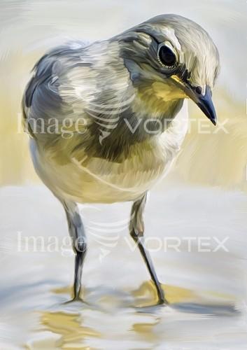 Bird royalty free stock image #890692510
