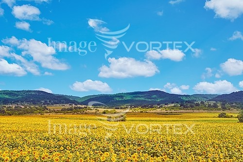 Industry / agriculture royalty free stock image #891148572
