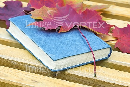 Education royalty free stock image #906330638