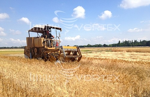 Industry / agriculture royalty free stock image #909111252