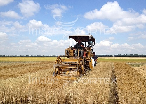 Industry / agriculture royalty free stock image #909125950