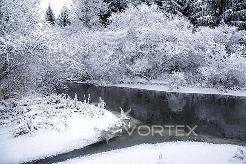 Park / outdoor royalty free stock image #920327745