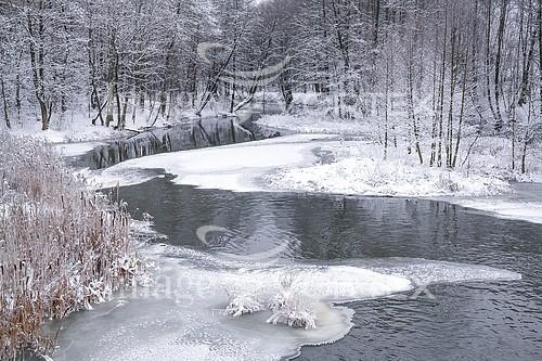 Nature / landscape royalty free stock image #921087746