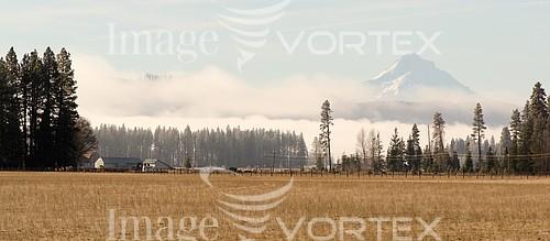 Nature / landscape royalty free stock image #924128940