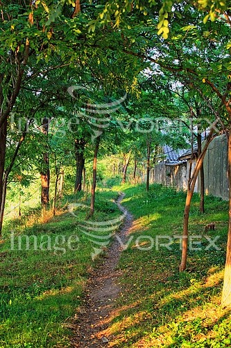 Park / outdoor royalty free stock image #933916819