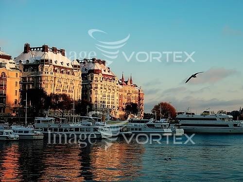 Christmas / new year royalty free stock image #935749767