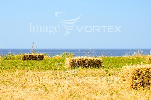 Industry / agriculture royalty free stock image #954542222