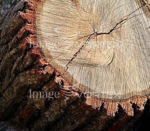 Nature / landscape royalty free stock image #961879066